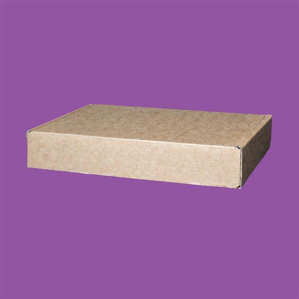 Cardboard Box 270 x 170 x 50 (mm)