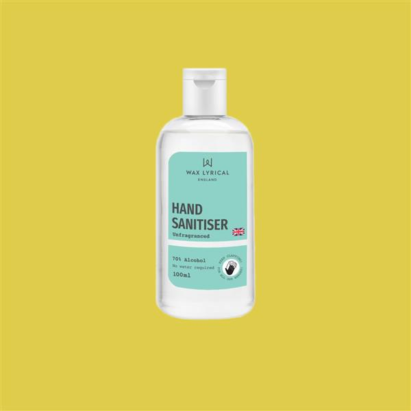 Hand Sanitiser 100ml Flip Top